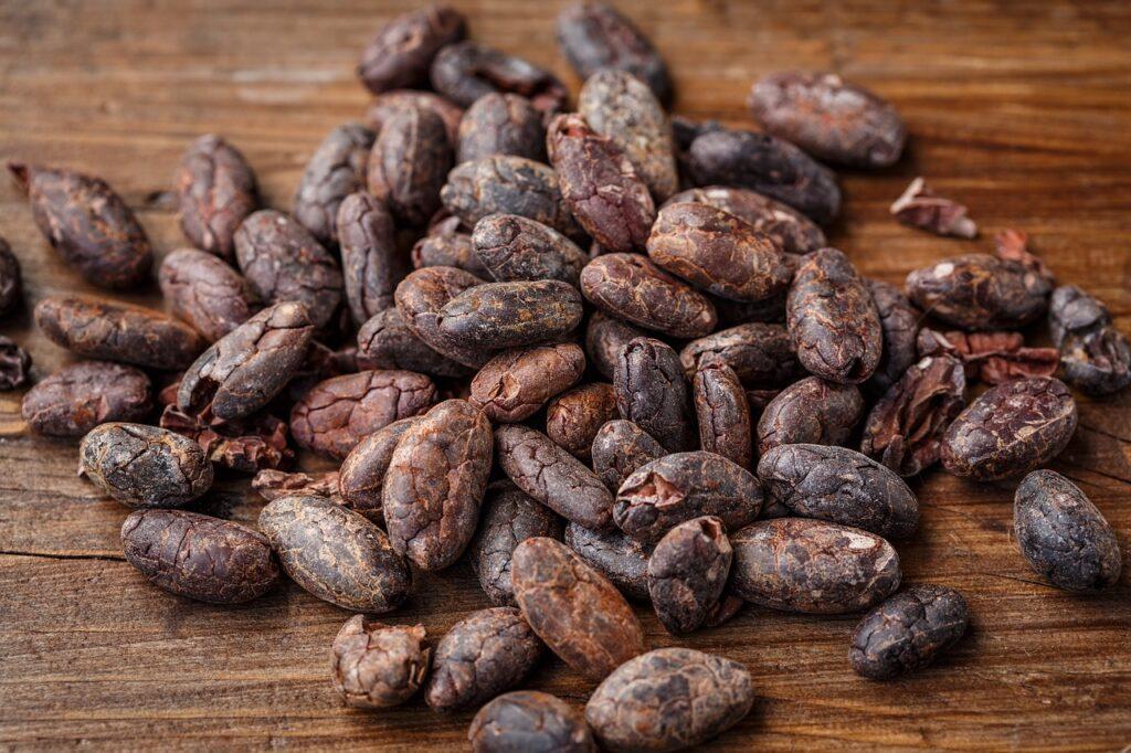 cacao bean, cocoa bean, cocoa